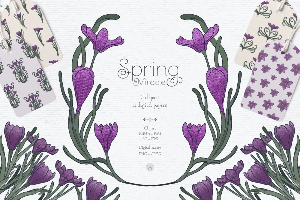 Crocus clipart by Wallifyer